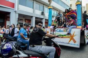 Orgullo Guayaquil - Gay pride Guayaquil - Orgullo LGBT Gay Ecuador Guayaquil 2015 - Asociación Silueta X Transgeneros (6)