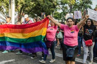 Orgullo Guayaquil - Gay pride Guayaquil - Orgullo LGBT Gay Ecuador Guayaquil 2015 - Orgullo y Diversidad Sexual (105)