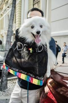 Orgullo Guayaquil - Gay pride Guayaquil - Orgullo LGBT Gay Ecuador Guayaquil 2015 - Orgullo y Diversidad Sexual (26)