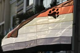 Orgullo Guayaquil - Gay pride Guayaquil - Orgullo LGBT Gay Ecuador Guayaquil 2015 - Orgullo y Diversidad Sexual (97)