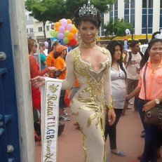 Orgullo y diversidad sexual 2014 - orgullo glbti - orgullo gay guayaquil - pride guayaquil asociación silueta x - Gay pride ecuador 2014 (11)
