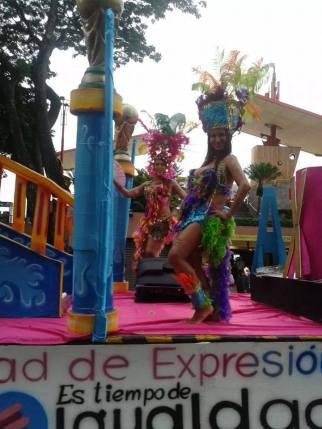 Orgullo y diversidad sexual 2014 - orgullo glbti - orgullo gay guayaquil - pride guayaquil asociación silueta x - Gay pride ecuador 2014 (19)